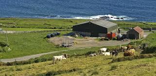 ferme irlande